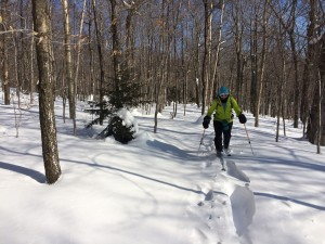 Sue Johnston, Little Pond in Section 5 of the Catamount Trail, near Stratton. Photo by Chris Scott. (2/2015)