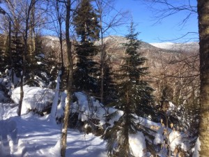 """""""Wednesday, February 18, 2015, Blueberry Hill to Rikert XC ski center """"The ski from BB Hill to Rikert (thru to Wagon Wheel road) was the most pleasant 12 miles of skiing I've done on the trail. The terrain was undulating, but relatively flat, and in the woods. The trails were all groomed or broken. There was a nice long downhill with bumps heading down to highway 125. Photo by Bob Ordemann."""